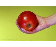 Polskie warzywa i owoce z dostawą do domu