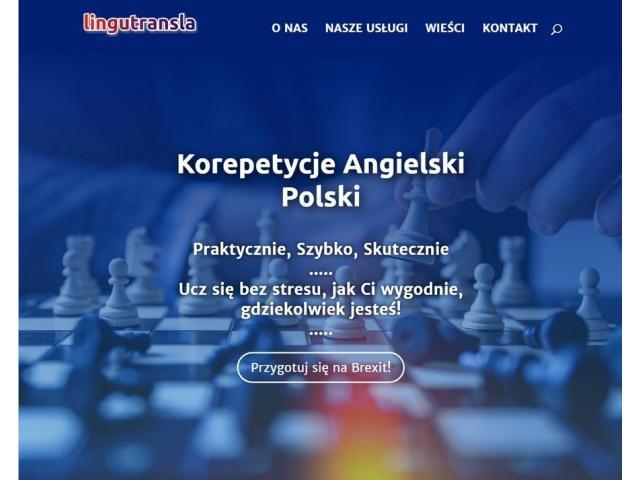 Korepetycje angielski, polski, tłumaczenia, pisanie tekstów i CV - 1/1