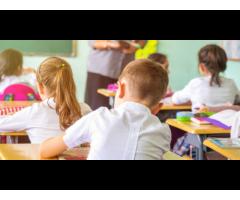 nauczanie domowe, korepetycje, lekcje prywatne - nauczyciel, pedagog