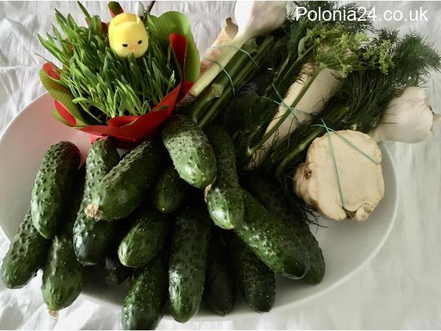 Warzywa i Jabłka z Polski - 10/10