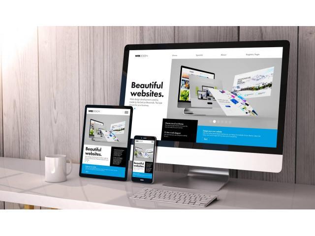Strony WWW; Informacyjne, blogi, sklepy, platformy e-learningowe - 1/1